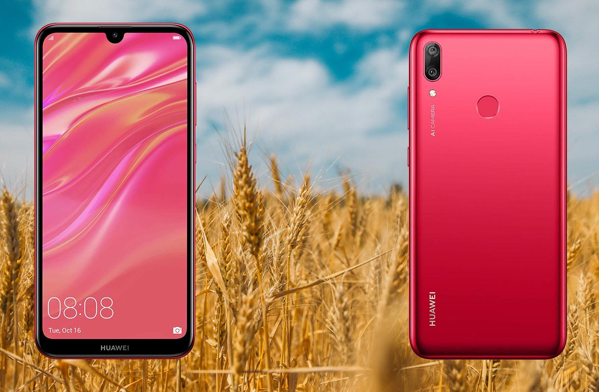 Huawei Y7 Pro 2019 with Wheat Field Background