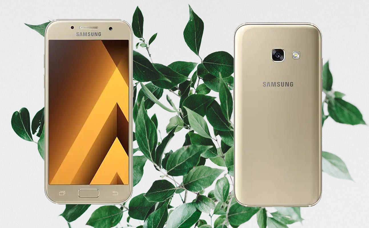 Samsung A3 2017 with Leaf Background