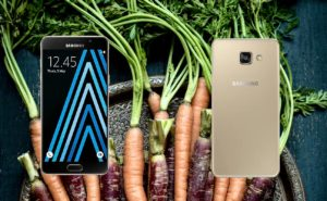 Samsung A5 2016 with Carrots