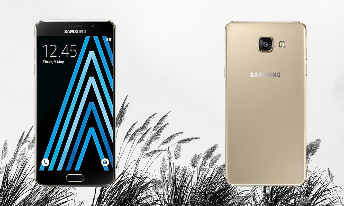 Samsung A5 2016 with Dessert Grass