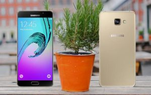 Samsung A7 2016 with Plant Background