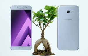 Samsung A7 2017 With Plant Root Background