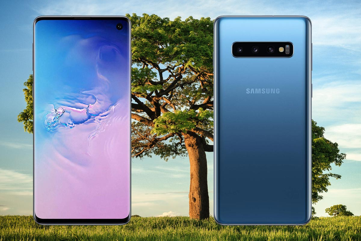 Samsung Galaxy S10 with Tree Background