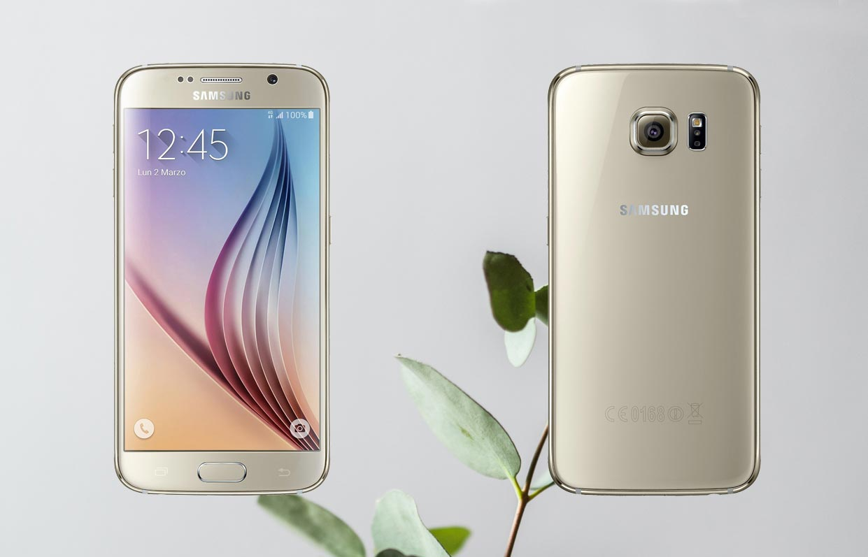 Samsung Galaxy S6 with Small Plant Background