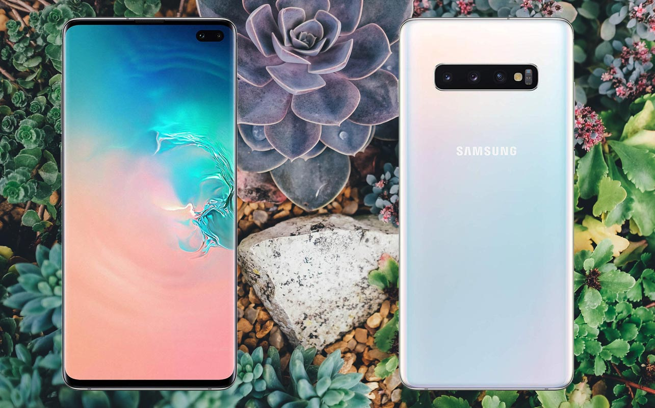 Samsung Galaxy S10 Plus with flower Background