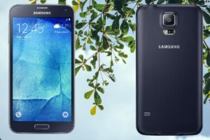 Samsung S5 Neo with Tree Branch