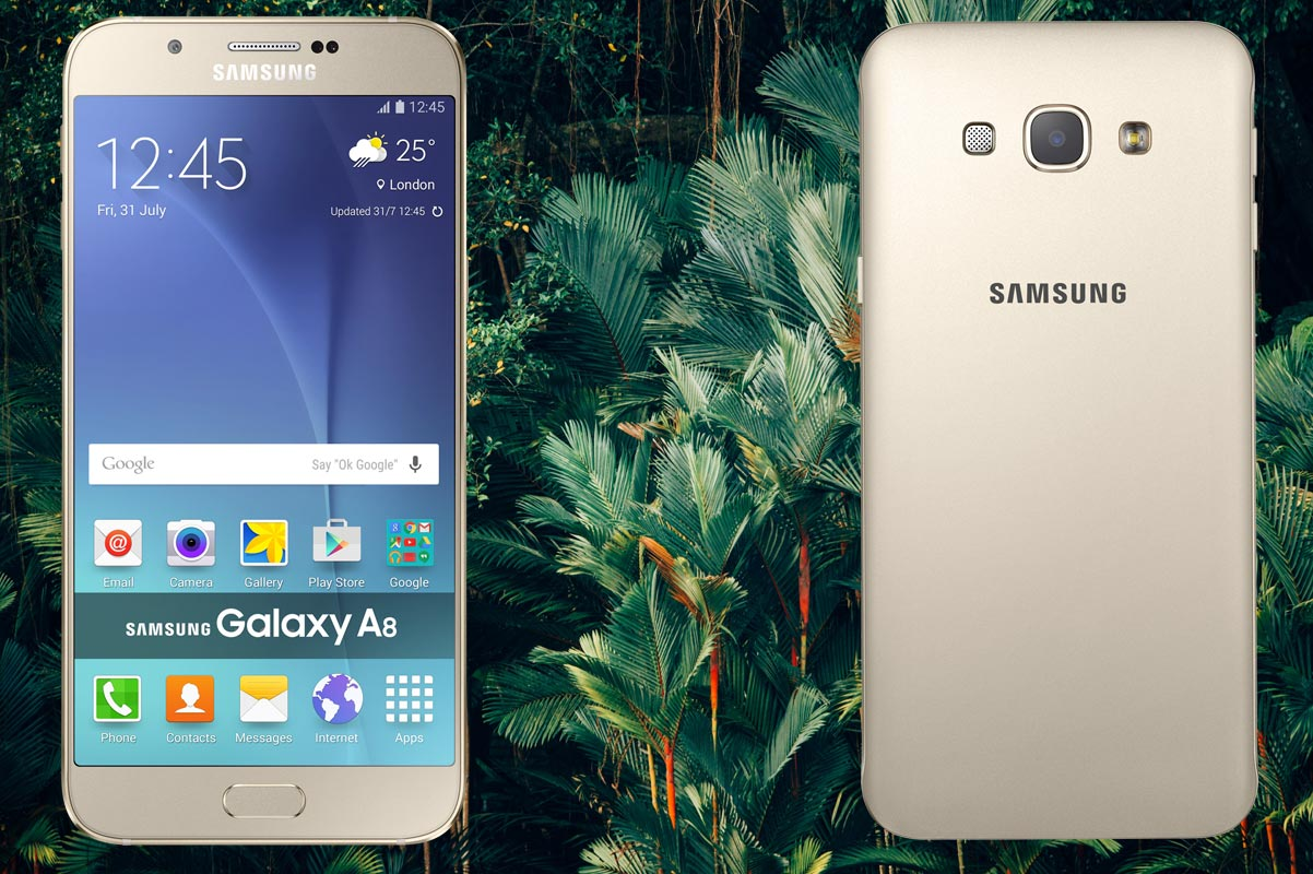 Samsung A8 with Forest Trees Background
