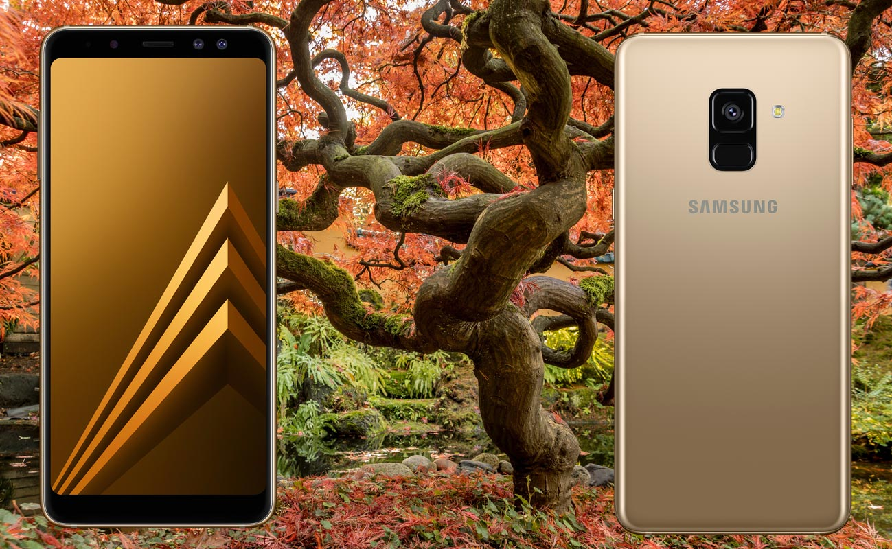 Samsung Galaxy A8 with Japan Maple Tree