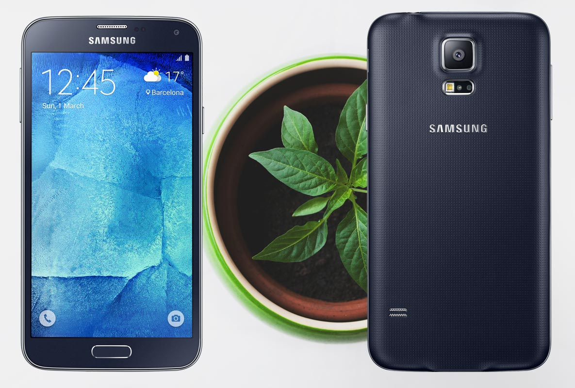 Samsung Galaxy S5 Neo with Small Plant