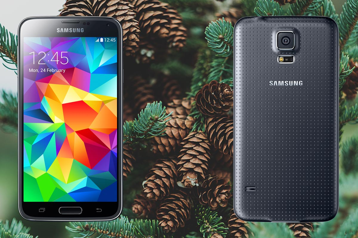 Samsung S5 with Pine Tree Background