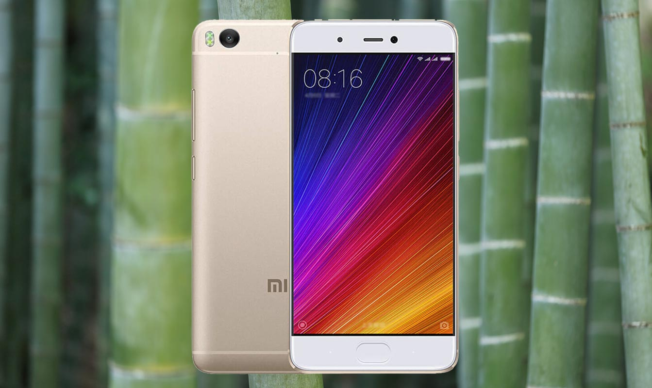 Xiaomi Mi 5s with Bamboo Background