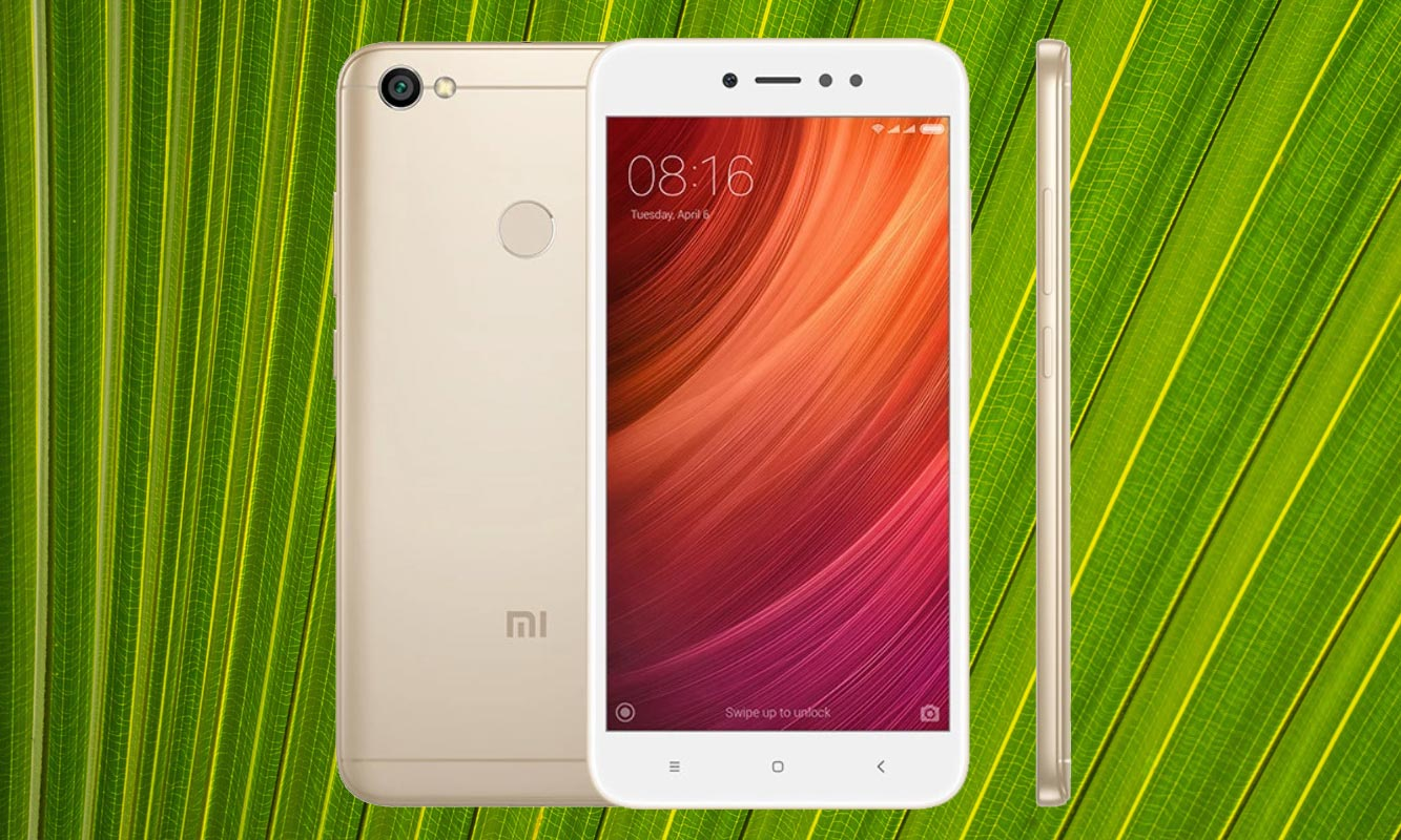 Xiaomi Redmi Y1 with Leaf Background