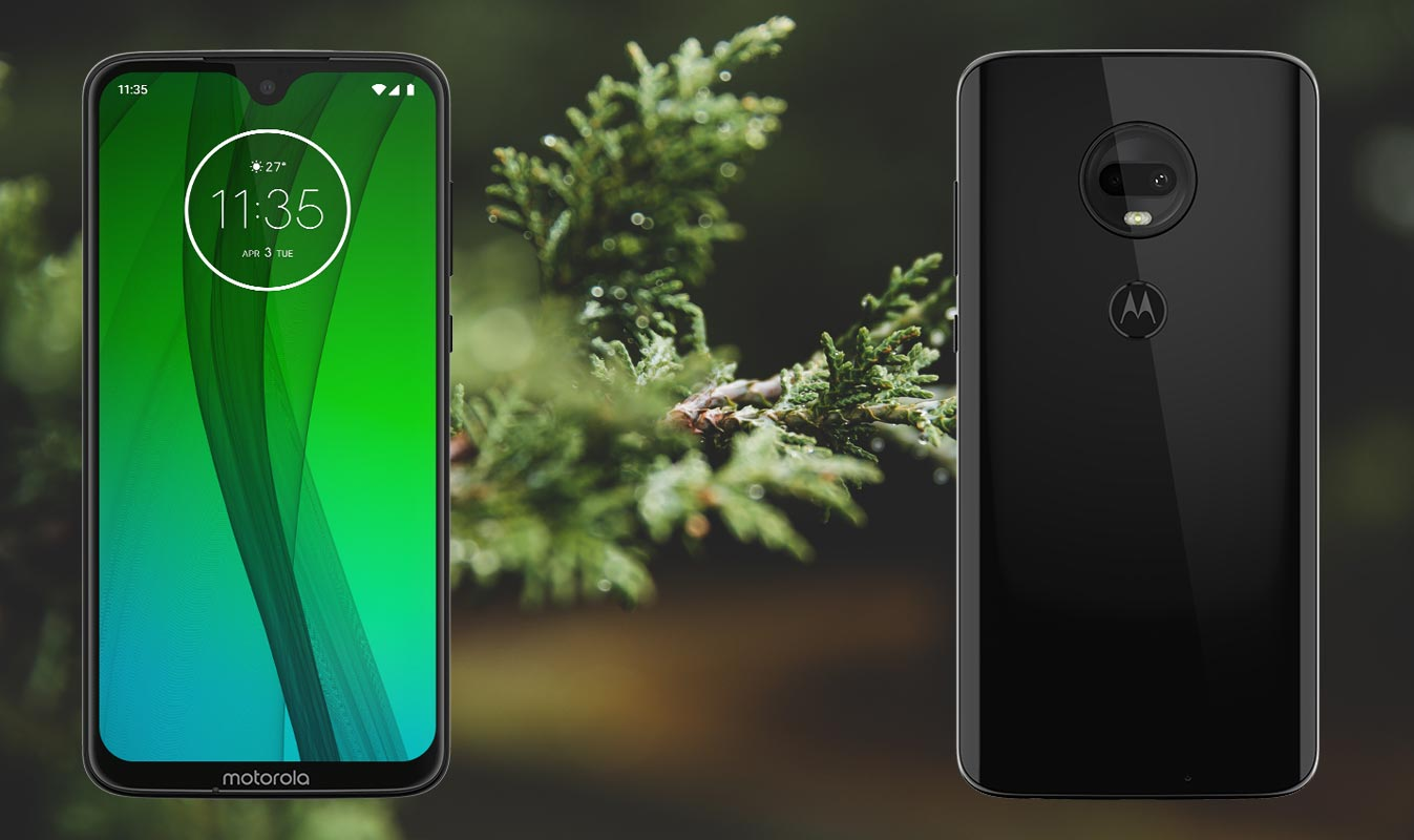 Moto G7 Plus with Tree Leaf Background