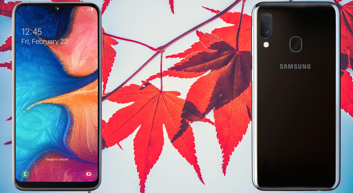 Samsung Galaxy A20e with Red Leaves Background