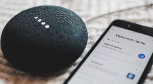 Google Home MIni and Google Home App Mobile
